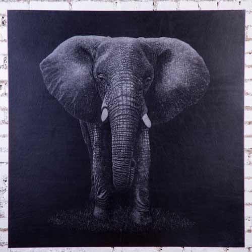 Картина на коже слона