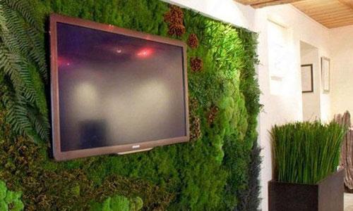 Стабилизированный мох в гостиной
