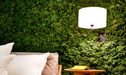 Стабилизированный мох на стене