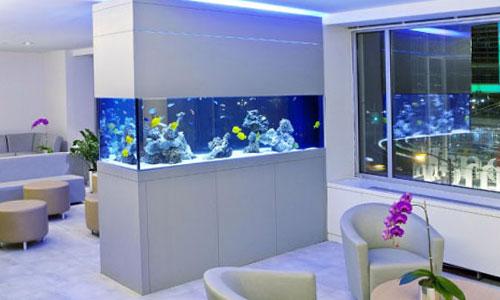 Зонирование помещения аквариумом