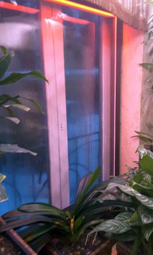 Водопад в оранжерее